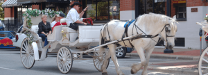 Horse and Carriage Rides Dallas West End